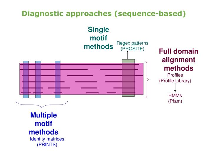 Diagnostic approaches (sequence-based)