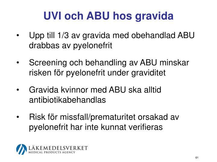 UVI och ABU hos gravida