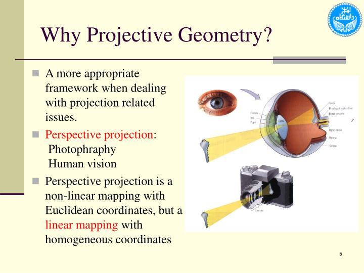Why Projective Geometry?