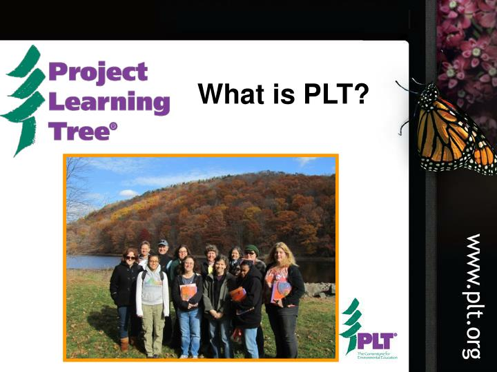What is PLT?