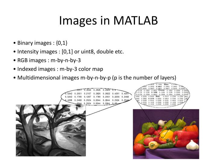 Images in MATLAB