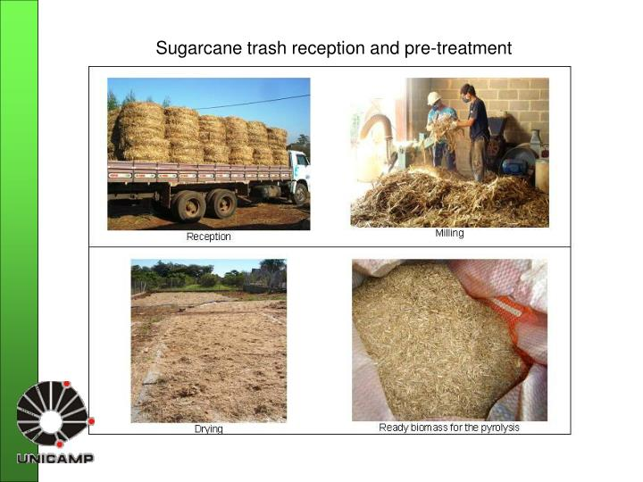 Sugarcane trash reception and pre-treatment