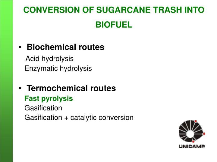 CONVERSION OF SUGARCANE TRASH INTO BIOFUEL