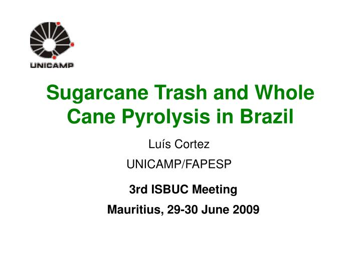 Sugarcane trash and whole cane pyrolysis in brazil