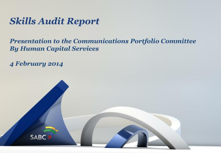 Skills Audit Report