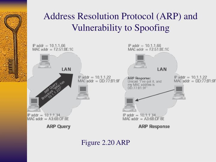 Address Resolution Protocol (ARP) and Vulnerability to Spoofing