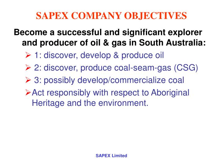 SAPEX COMPANY OBJECTIVES