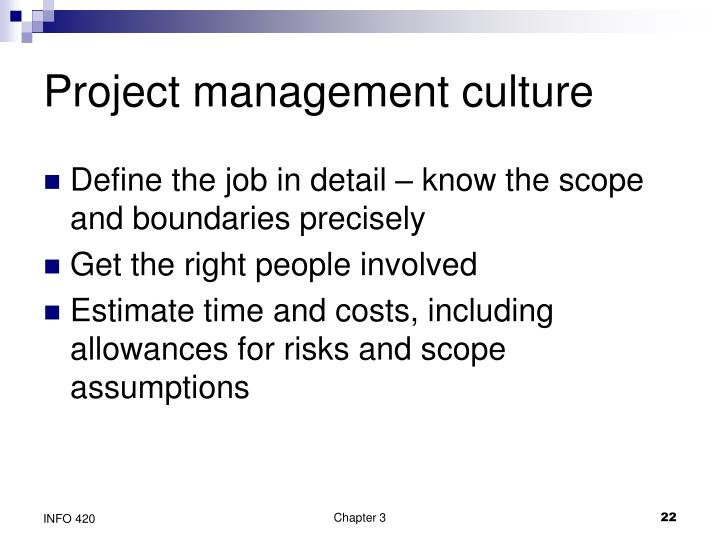 Project management culture