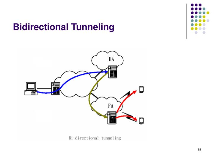 Bidirectional Tunneling