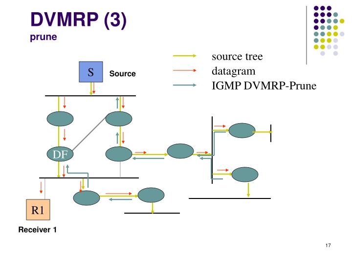 DVMRP (3)