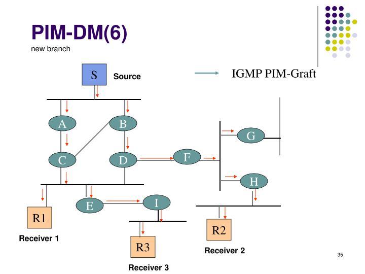 PIM-DM(6)
