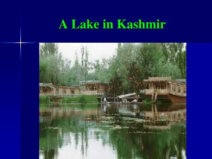A Lake in Kashmir