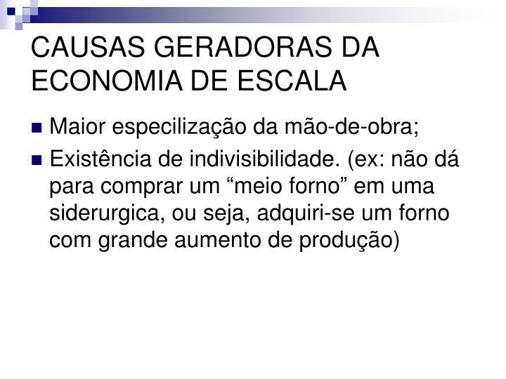 CAUSAS GERADORAS DA ECONOMIA DE ESCALA