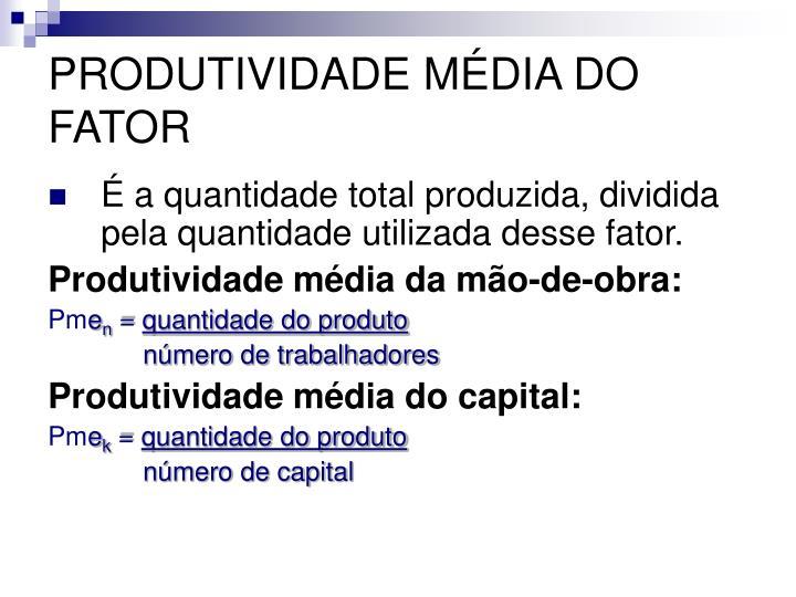 PRODUTIVIDADE MÉDIA DO FATOR