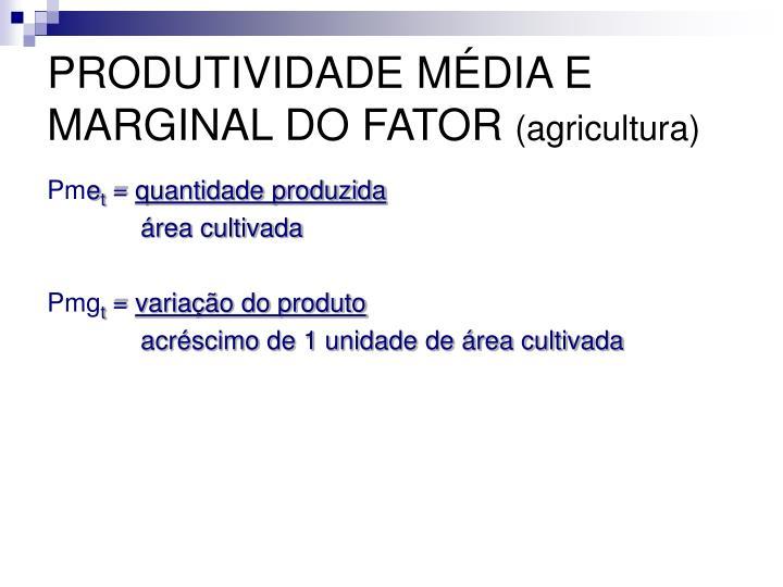 PRODUTIVIDADE MÉDIA E MARGINAL DO FATOR