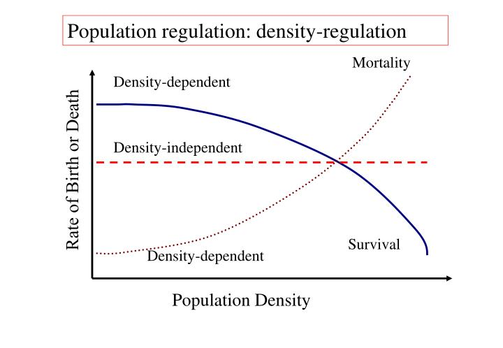 Population regulation: density-regulation