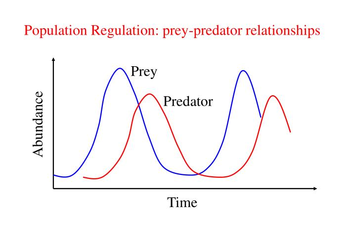 Population Regulation: prey-predator relationships