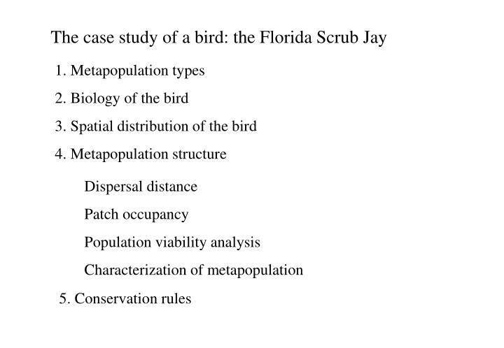 The case study of a bird: the Florida Scrub Jay
