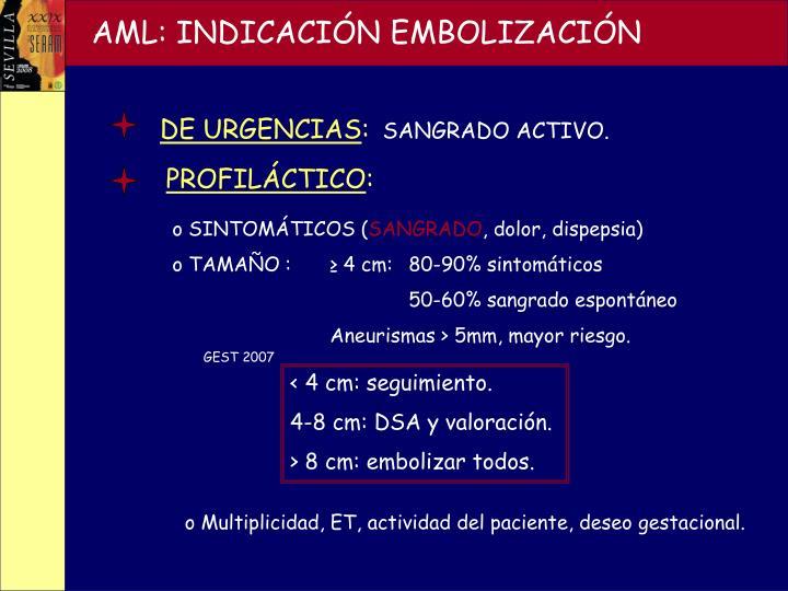 AML: INDICACIÓN EMBOLIZACIÓN