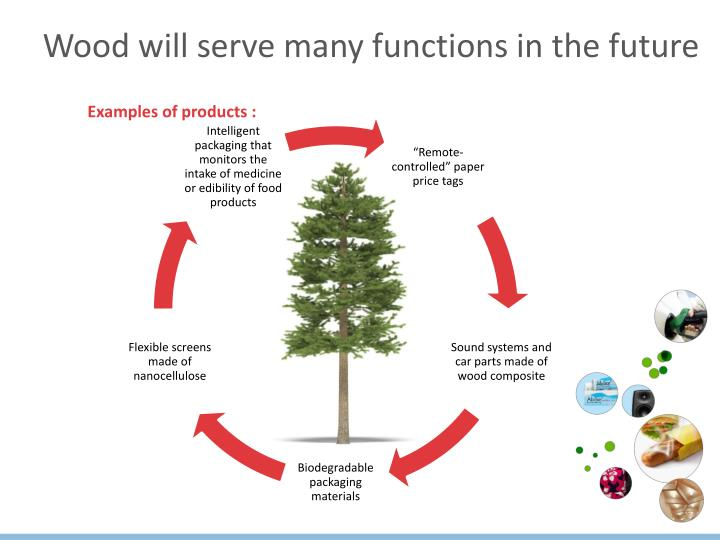 Wood will serve many functions in the future
