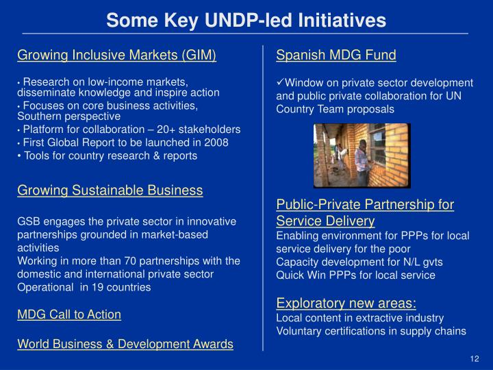 Some Key UNDP-led Initiatives