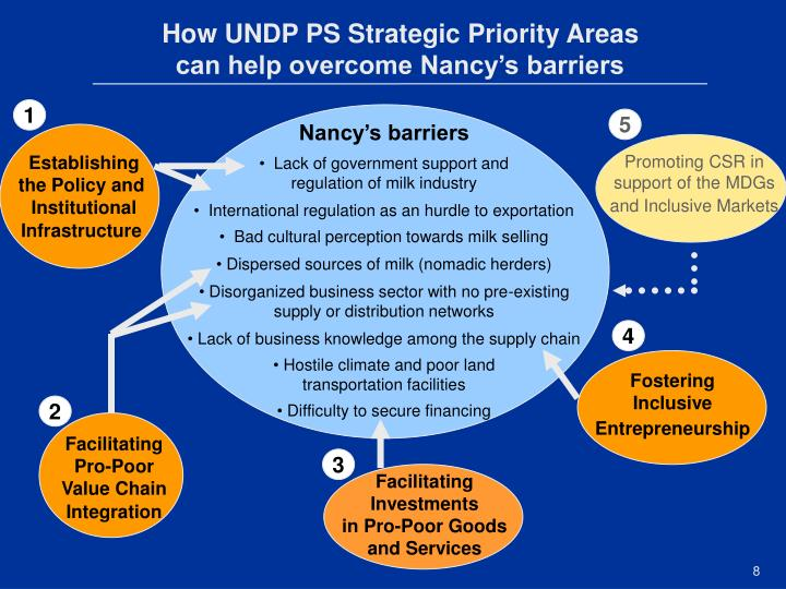 How UNDP PS Strategic Priority Areas