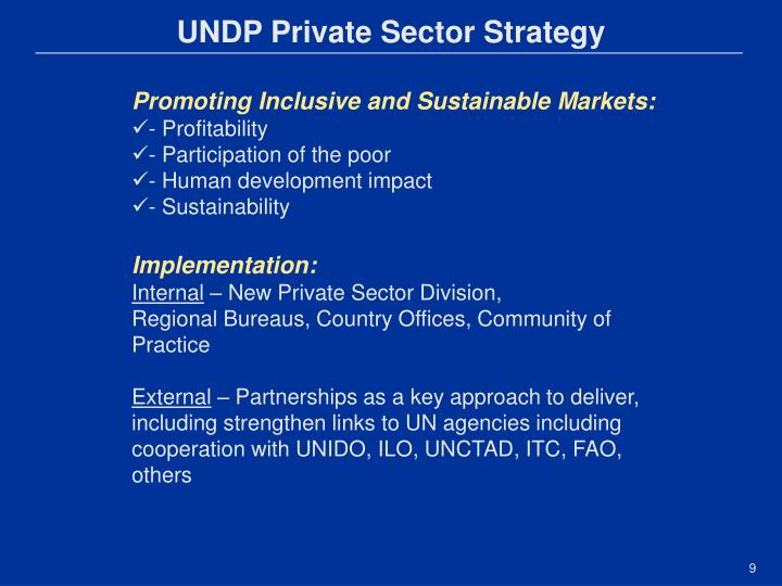 UNDP Private Sector Strategy