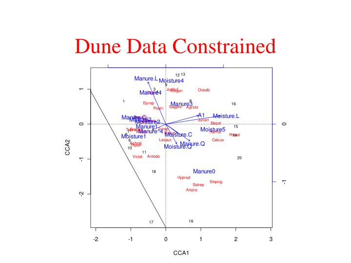 Dune Data Constrained