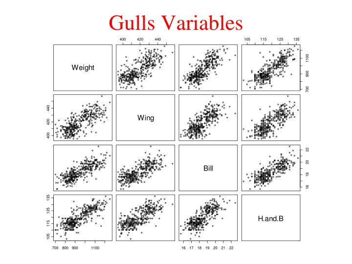 Gulls Variables