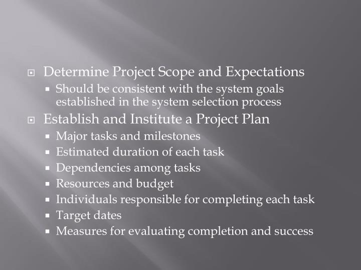 Determine Project Scope and Expectations