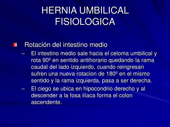 HERNIA UMBILICAL FISIOLOGICA