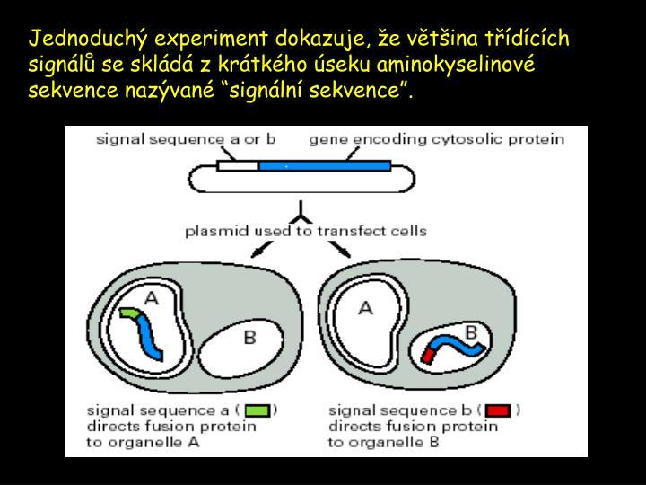 Jednoduchý experiment dokazuje, že většina třídících signálů se skládá z krátkého úseku aminokyselin