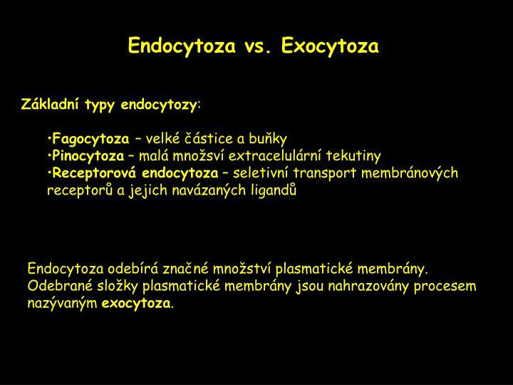 Endocytoza vs. Exocytoza