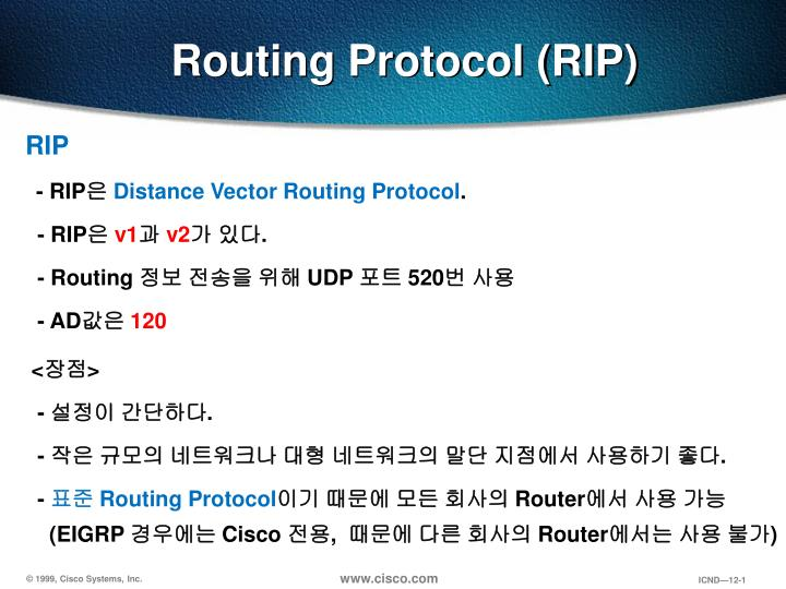 Routing protocol rip