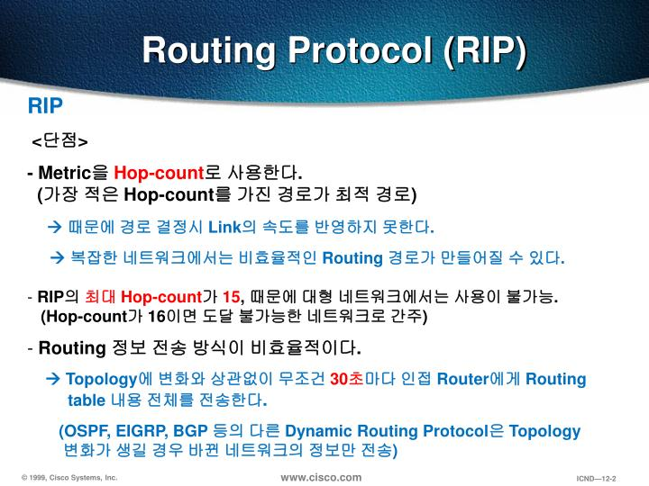 Routing protocol rip1