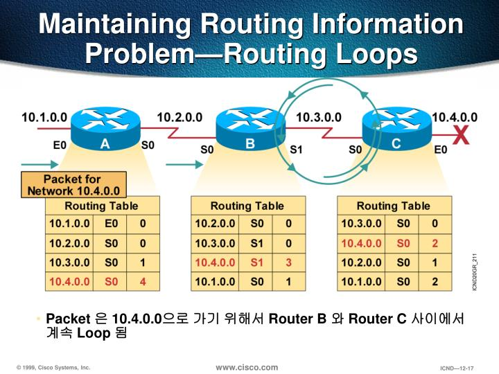Maintaining Routing Information Problem—Routing Loops