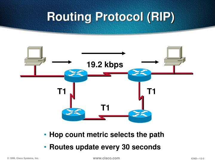 Routing Protocol (RIP)