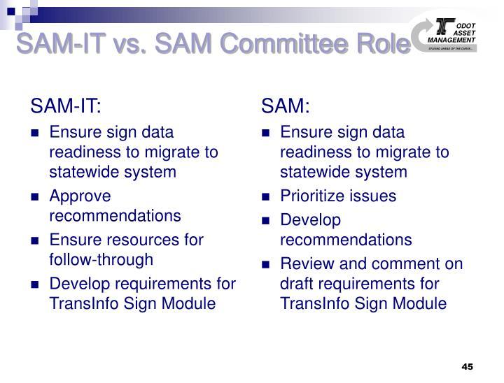 SAM-IT:
