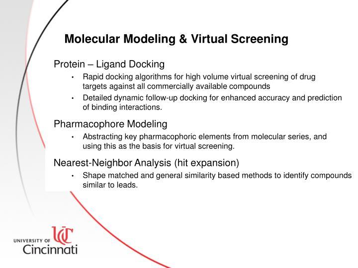 Molecular Modeling & Virtual Screening