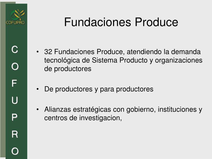 Fundaciones Produce