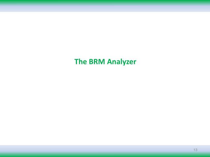 The BRM Analyzer