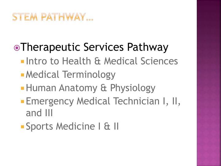 STEM Pathway…