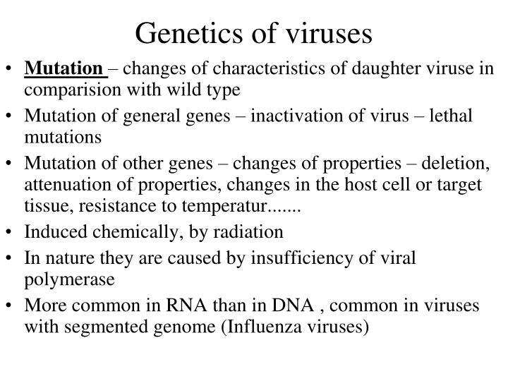 Genetics of viruses