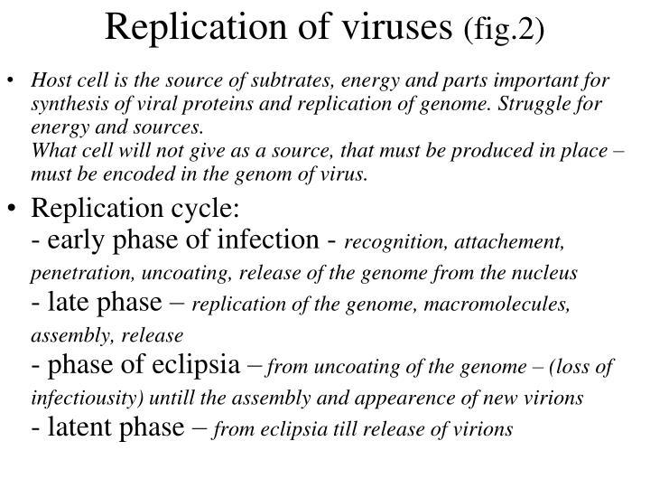 Replication of viruses
