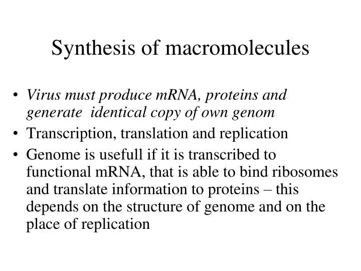 Synthesis of macromolecules