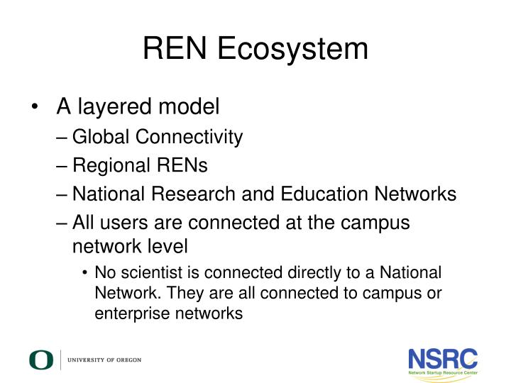 REN Ecosystem