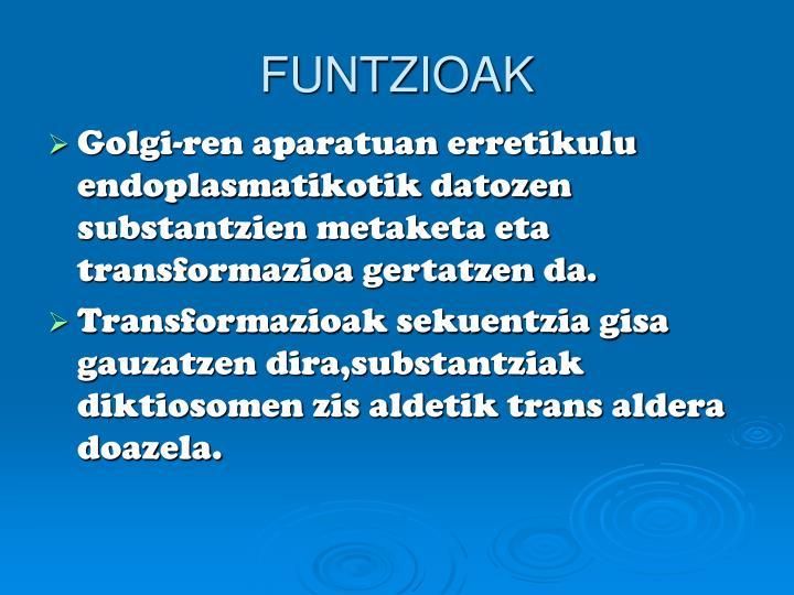 FUNTZIOAK