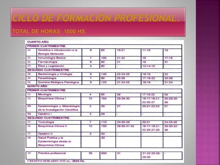 Ciclo de formación PROFESIONAL.