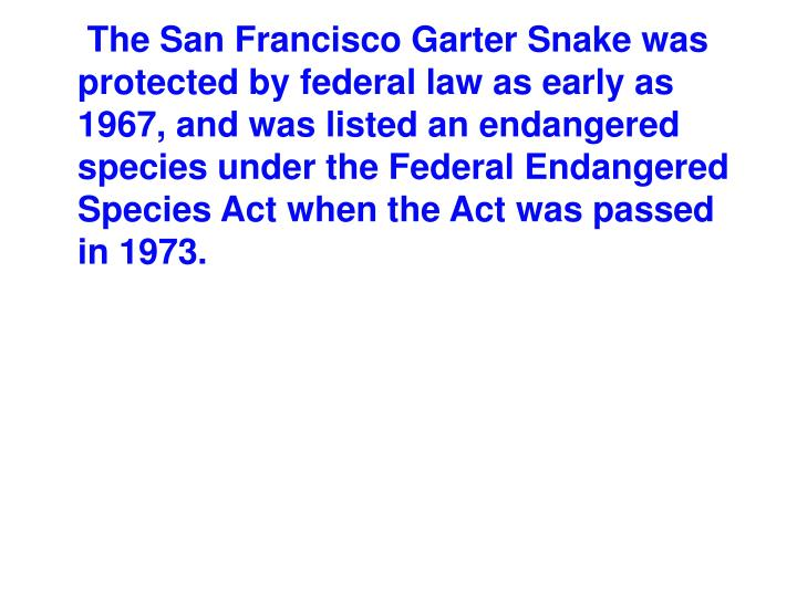 The San Francisco Garter Snake was protected by federal law as early as 1967, and was listed an endangered species under the Federal Endangered Species Act when the Act was passed in 1973.
