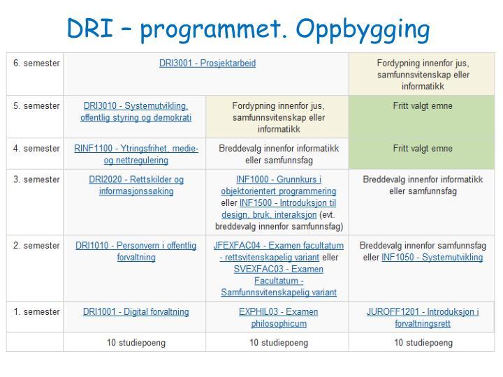 DRI – programmet. Oppbygging